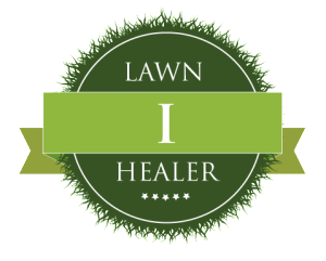 how to build up lawn level