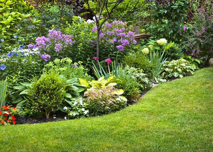 garden-potential